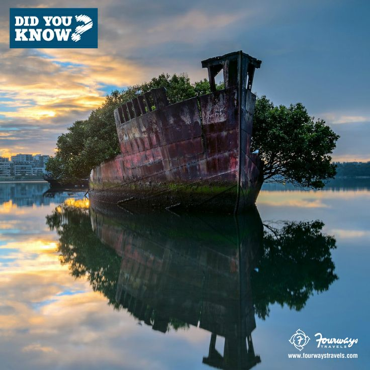 DidYouKnow: This Abandoned Ship In #Australia Is About 120