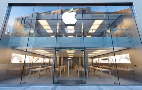 Apple con il Wwf per le foreste cinesi © ANSA