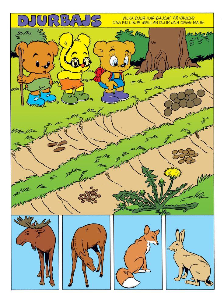 Djur i skogen – Bamse.se