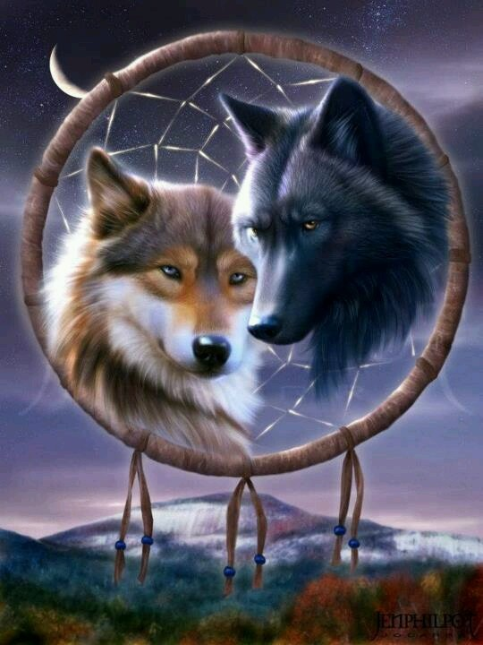 Wolves and dream catcher