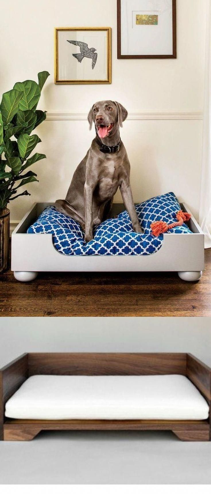Latest doggie beds for both large & small dogs. Must have