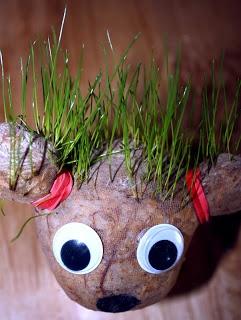 Kolmiulotteisuus - nailonsukkapäät - nylonsukka täytetään sahanpurulla, pohjalle laitetaan ruohonsiemeniä. Nailonit sidotaan kuminauhalla.Letit, korvat, tms. erityispiirteet sidotaan paikoilleen kuminauhoilla. Silmät, yms. kiinnitetään kuumaliimalla. Päälakea kastellaan, jotta ruoho alkaa kasvaa.