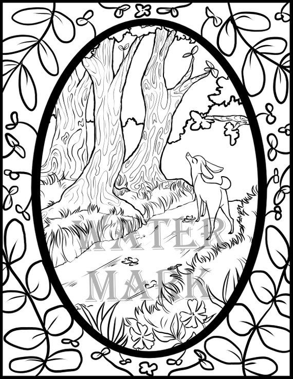 Forest Path Digital Coloring Page Coloring Pages Forest Path Color