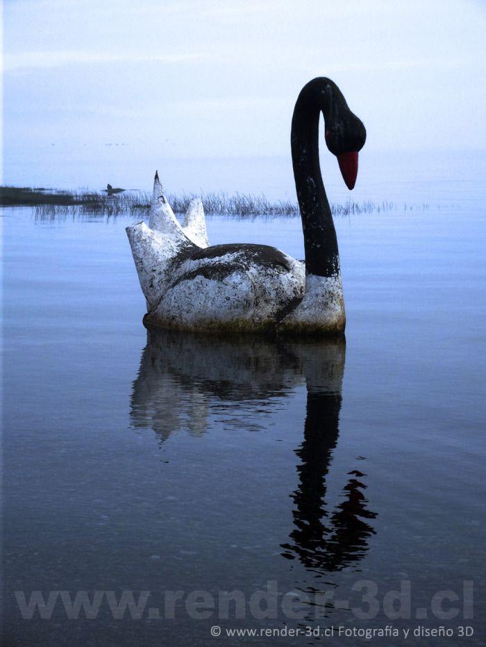 Foto Escultura Cisne en Llanquihue, Sur de Chile, Region de Los Lagos | Llanquihue Turismo