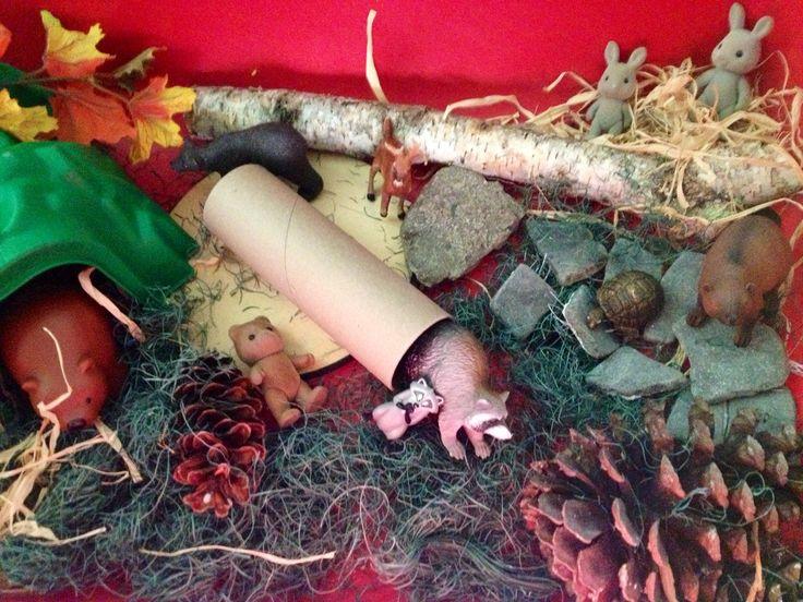 Hibernation Sensory Bin Creations From Children First