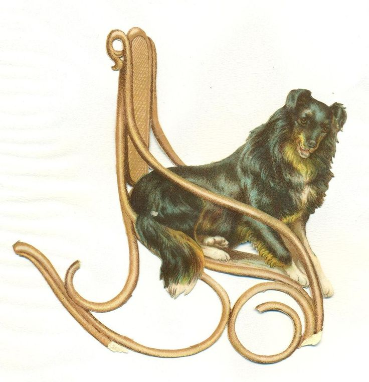 large victorian  scrap dog reated in chair