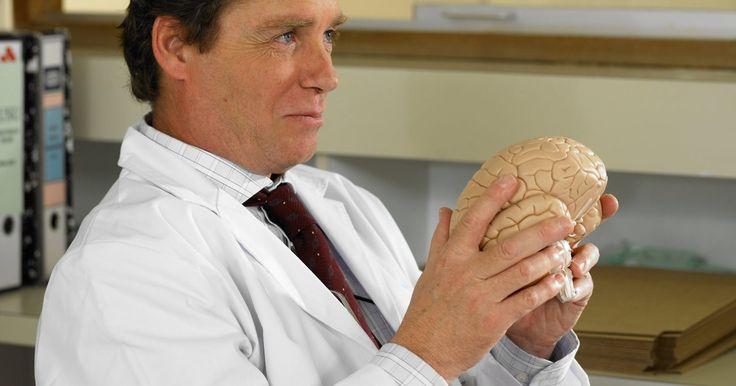 ¿Cuál es la diferencia entre el SNC y el SNP?. El sistema nervioso humano es un complicado sistema de conexiones de neuronas y células asociadas. El sistema nervioso nos permite pensar, respirar y sentir. Los científicos categorizan el sistema nervioso en dos partes principales: el sistema nervioso central (SNC) y el sistema nervioso periférico (SNP). Estas partes del sistema nervioso difieren ...