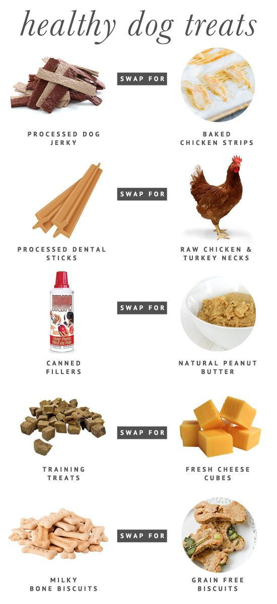 5 Fresh & Healthy Dog Treat Alternatives - easy swap outs to ensure that your dog is getting the freshest – and yummiest! – dog treats that keep them healthy and happy, inside and out.