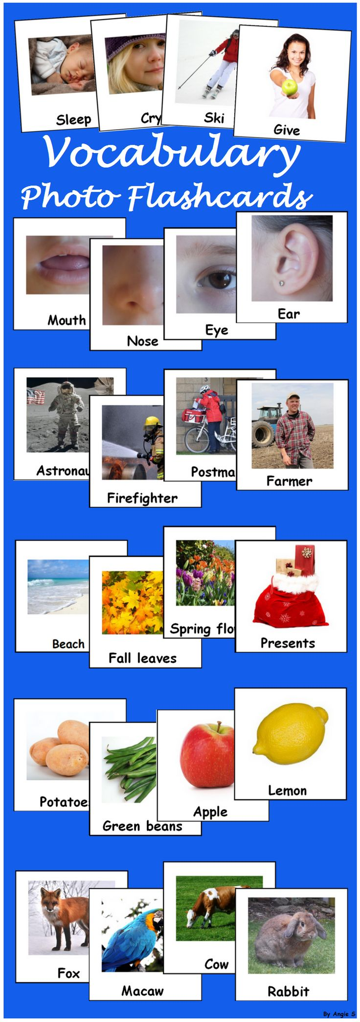 Printable Photo Flascards Bundle, Vocabulary Picture Cards for Speech Therapy, Special Education, TEACCH, OT. These printables are great for learning new words with your ESL students or preschool and kindergarten kids.    For more resources follow https://www.pinterest.com/angelajuvic/autism-special-education-resources-angie-s-tpt-sto/