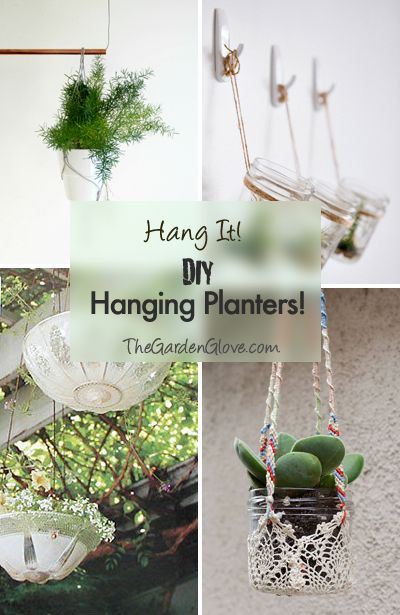Hang It! • DIY Hanging Planters • Ideas & Tutorials!-love the vintage glass being light shade planters, too cute.