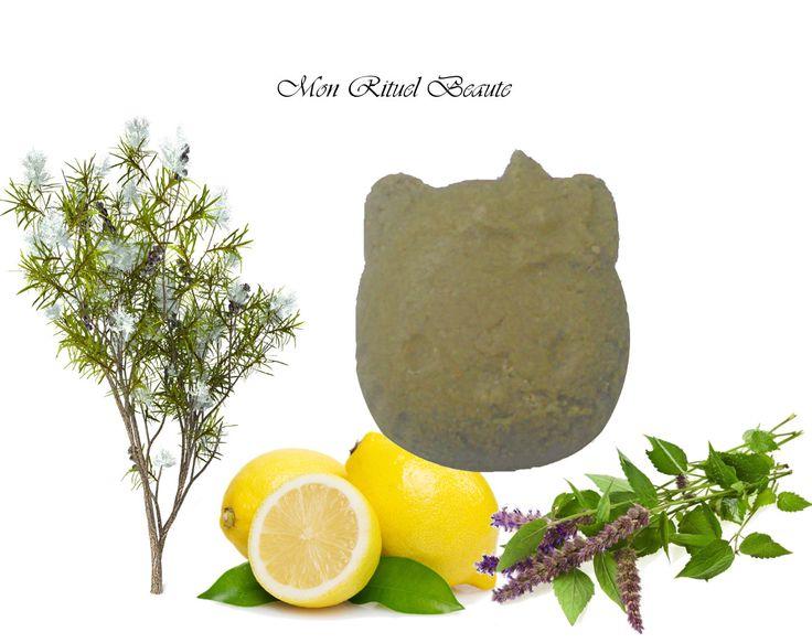Shampoing solide Bio cheveux Gras et sans volume aux huiles essentielles : Soin, bien-être par mon-rituel-beaute