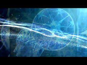 Autoguérison - Régénération du corps humain. Comment guérir certaines parties du corps ? - YouTube