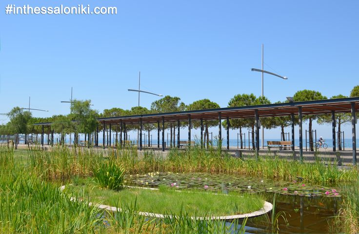 ● Thessaloniki - Nea Paralia Wonderful Parks and a majestic summer morning!  ● Θεσσαλονίκη Νέα Παραλία Πανέμορφα πάρκα και υπέροχα καλοκαιρινά πρωϊνά!  ● #thessaloniki #neaparalia #nea #paralia #greece #macedonia #grece #grecia #salonique #solun #travel #tourism #waterfront #parks