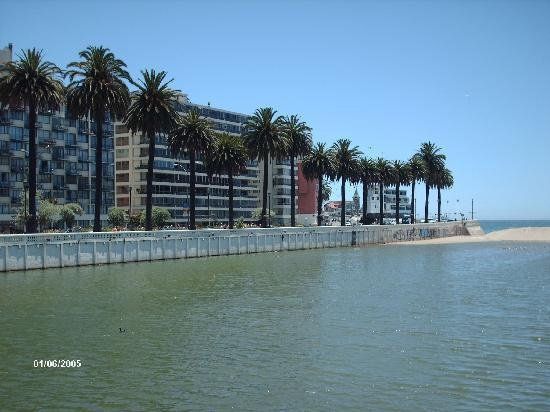 Estero Marga Marga Viña del Mar