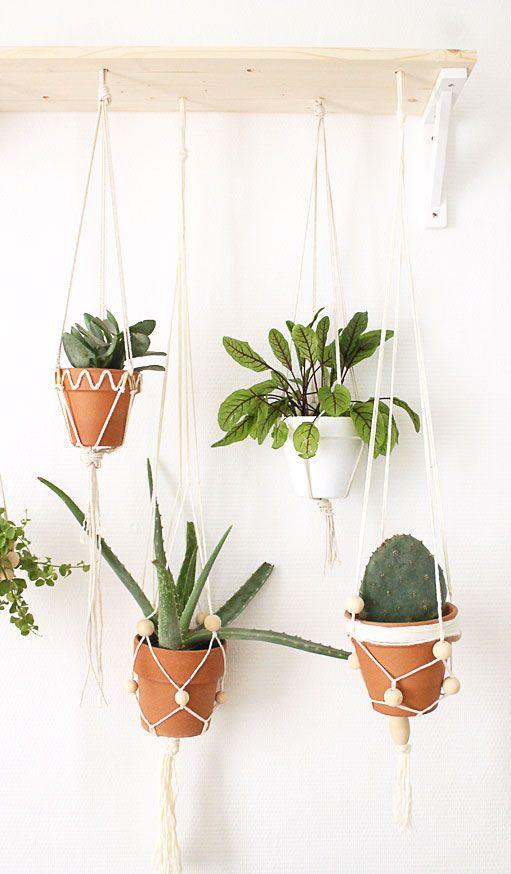 les 25 meilleures id es de la cat gorie plantes suspendues. Black Bedroom Furniture Sets. Home Design Ideas