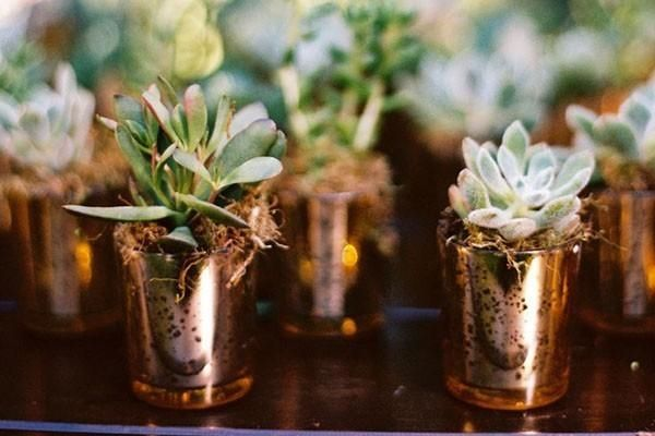 Green succulent wedding favors in copper pots for a modern wedding.