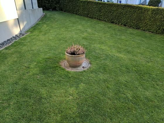 Good Anleitung zum sch nen Rasen ohne Moos und Unkraut Bauanleitung zum selber bauen Selber machen