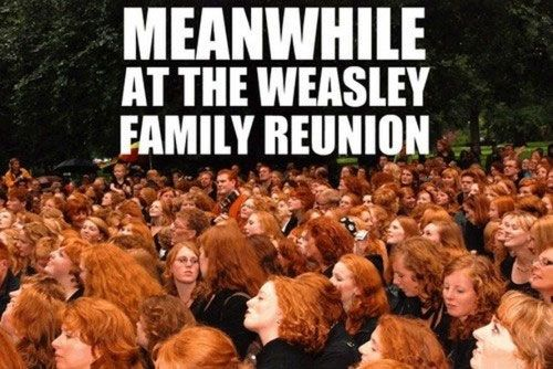POPHANGOVER » Blog Archive » Harry Potter Humor (30 Pics).... It fit right in there... No one would know I'm not one of them lol