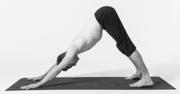 Beneficios de la postura del perro mirando hacia abajo en yoga. Dentro de las posturas de yoga para principiantes, una de las que más destacan es la que se conoce con el nombre de perro mirando hacia abajo o, en sánscrito, Adho Mukha Svanasana. Se trata de uno de ...
