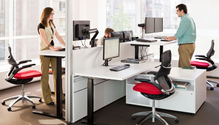Adjule Height Table Stand Up Desk
