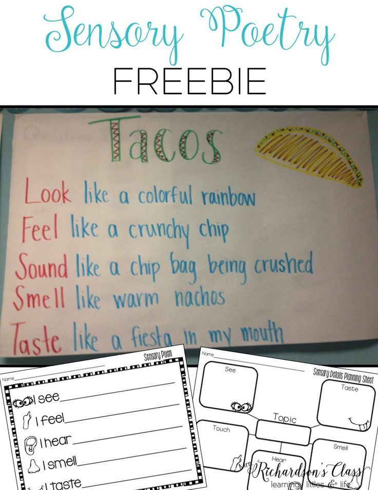 Sensory Poetry Made Simple for Kindergarten and First Grade, plus snag the great FREEBIE that will help you get started with write your own sensory poem!
