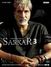 Sarkar 3 2017 Hindi Movie Online Download Free
