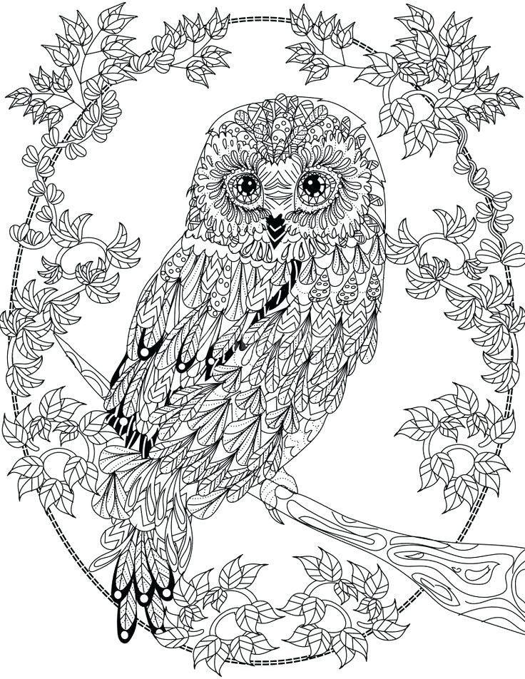 Mandala Owl Coloring Pages Animal Mandala Coloring Pages Best Coloring Pages For Kids Coloriage Chouette Oiseaux A Colorier Oiseau Coloriage