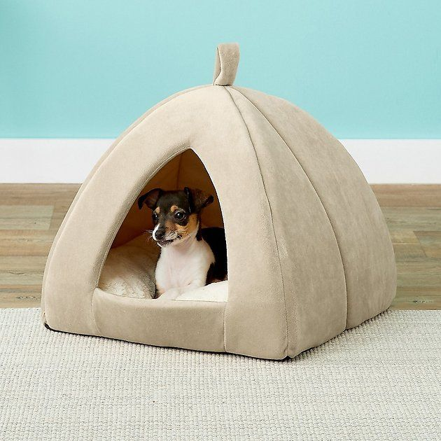 Frisco Tent Covered Cat Dog Bed Sandy Beige Large Chewy Com Dog Tent Novelty Dog Beds Dog Tent Bed