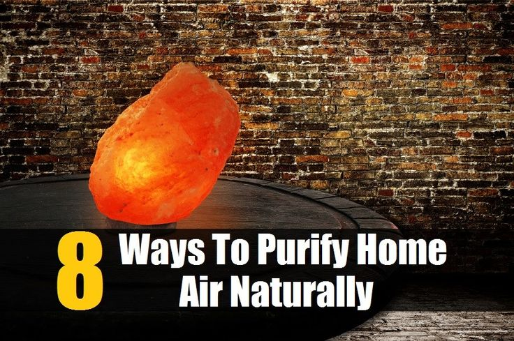 8 Ways To Purify Home Air Naturally So Your Family Can Breathe The Healthiest, Cleanest Air Possible