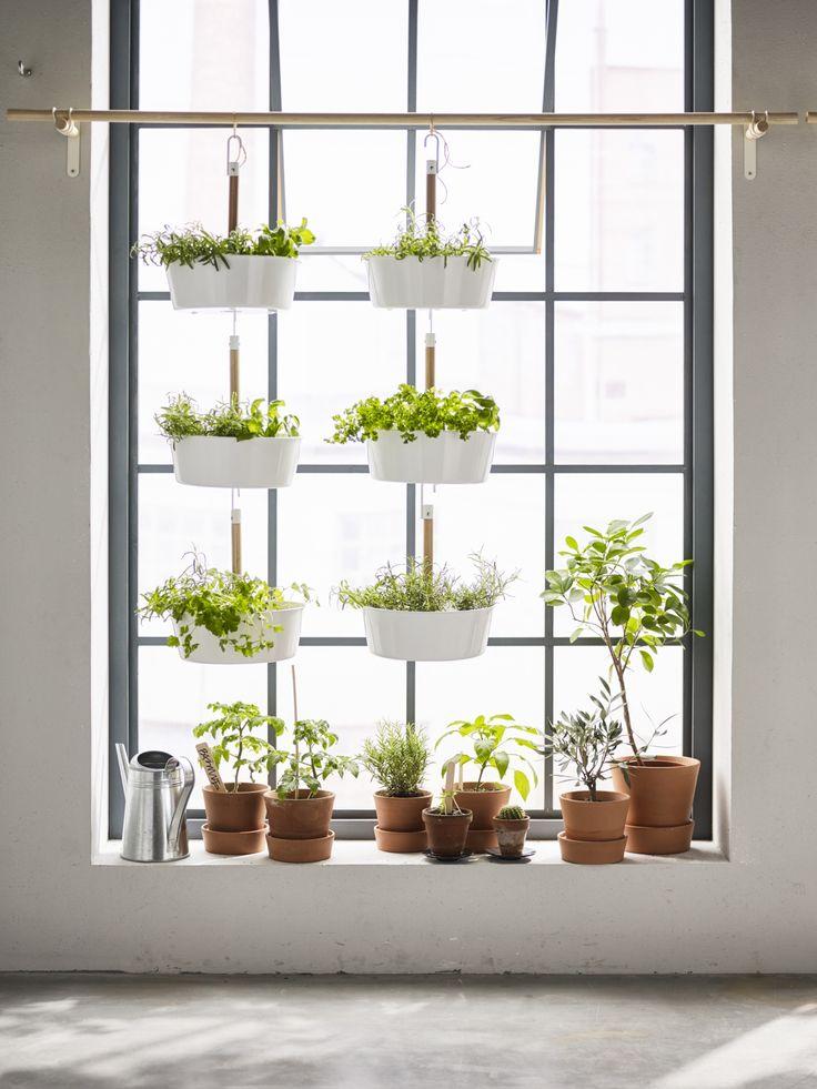 BITTERGURKA plantenhanger | #IKEA #IKEAnl #inspiratie #wooninspiratie #groen #planten #urbangardening #urbanjungle #kruiden #moestuin