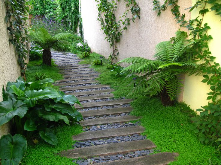 17 meilleures id es propos de jardins contemporains sur - Deco jardin avec tige de bambou saint denis ...