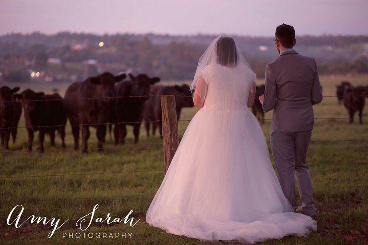 Patrick & Kristy's Engagement Party/Surprise Wedding