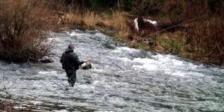 Ouverture de la Pêche à la truite en france 2014: Cette année l´ouverture de la pêche à la truite est accompagnée de tristes nouvelles