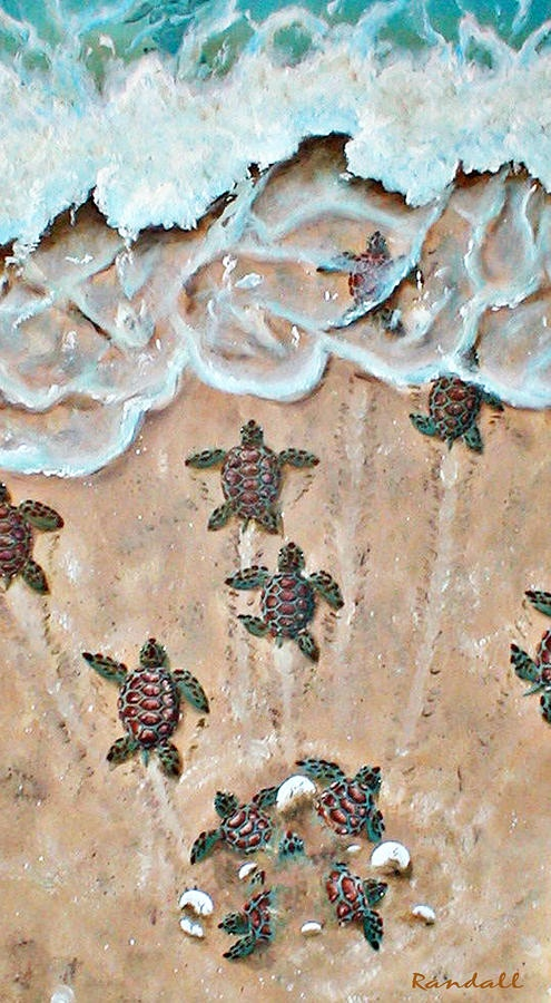 Baby turtles leaving the nest. Randall Brewer, ocean art paintings of dolphin's whales manatees and turtles.
