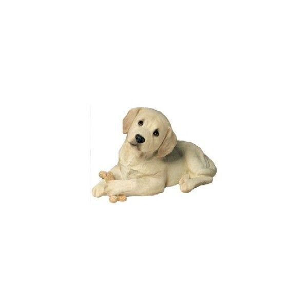 7 Best Images About Labrador Retriever On Pinterest