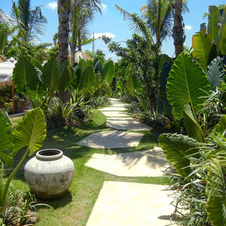 Tropical garden crush! The grounds of the health hub at Komune Resort are just gorgeous. I adore paths & gardens & blue skies! Heaven. . .