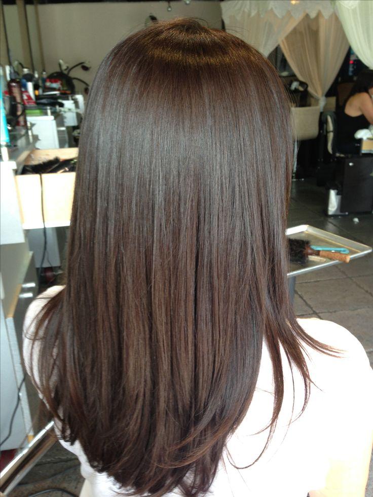 level 4 hair color ideas