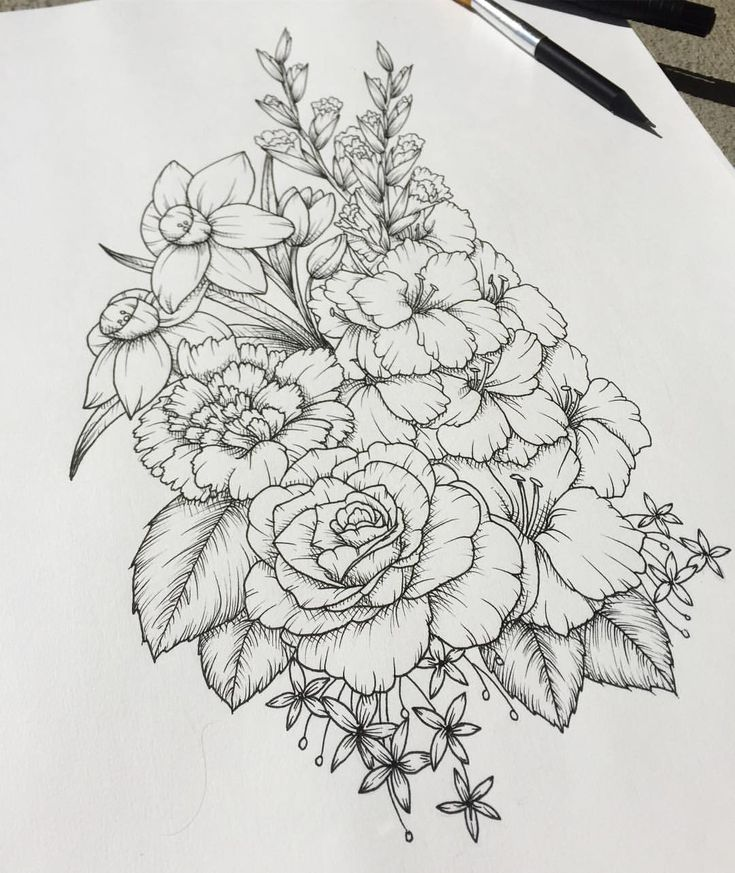 Closer shot flowers art drawing linedrawing daffodils