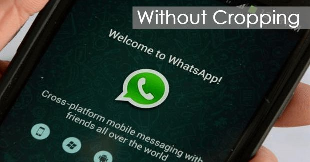 In today's date, Whatsapp needs no introduction. It is a brilliant social networking app by Facebook. It is an instant messaging app which uses 2G,3G,4G or Wifi connection to send and receive messages. Recently WhatsApp added free call option within the app. For all that, you just need an... http://indytags.com/how-to-set-whatsapp-profile-picture-without-cropping/