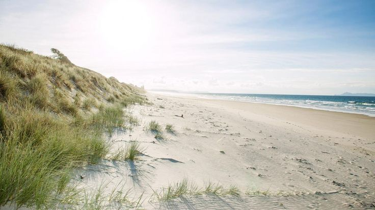 Long regarded as one of the few untouched ocean beaches in the Rodney area, Pakiri Beach