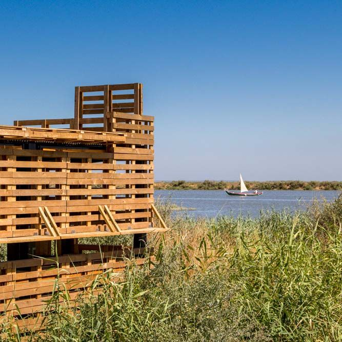 Tagus Linear Park by Topiaris Landscape Architecture. Joao Morgado captures the different tones of beige to brown, the basic colours that constitute the atmosphere of this large scale landscape project.