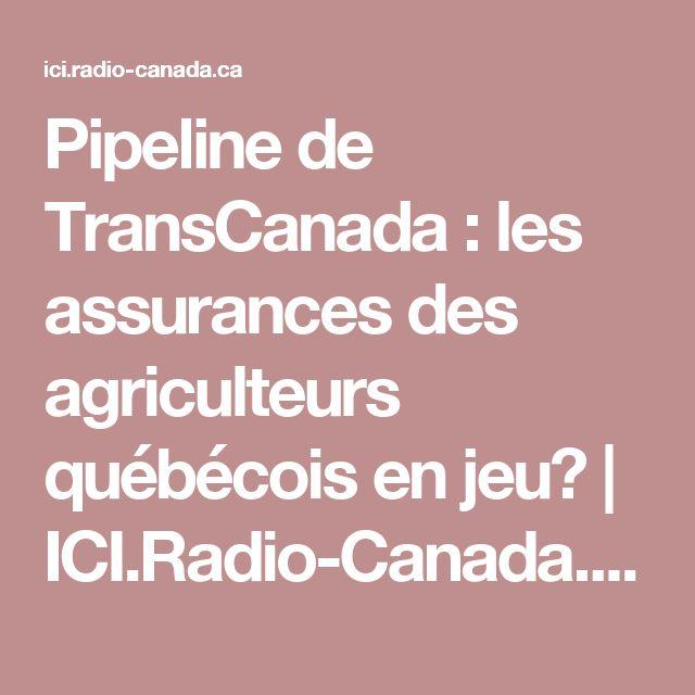 Pipeline de TransCanada: les assurances des agriculteurs québécois en jeu? | ICI.Radio-Canada.ca