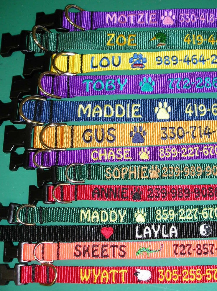 Personalized custom made embroidered dog collars by Sewtropical, $19.00