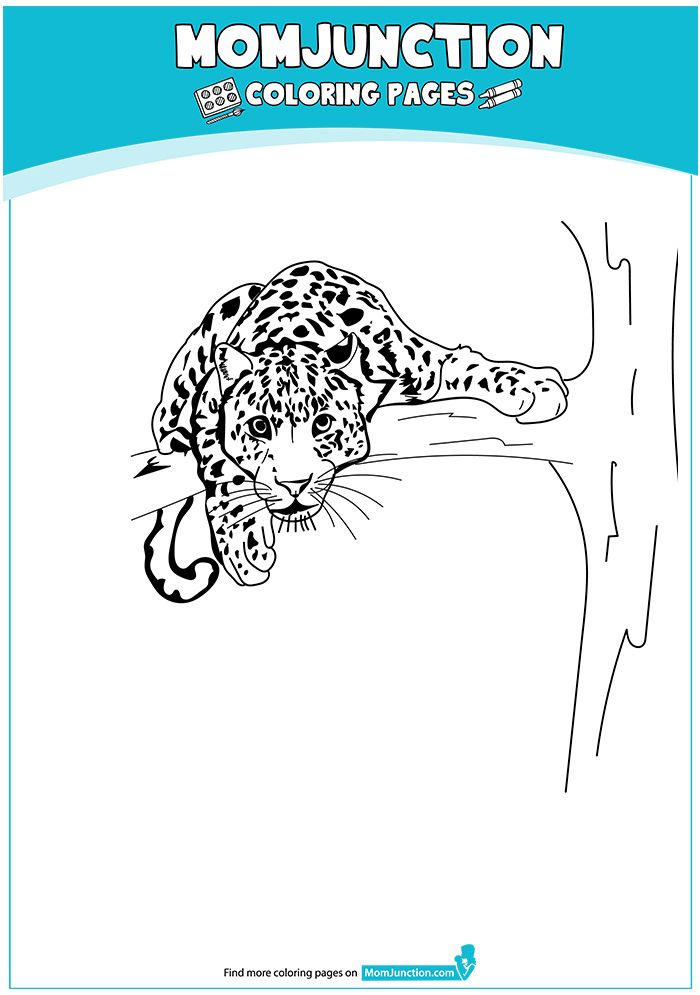 Print Coloring Image Momjunction Coloring Pages Cute Baby Clothes Mom Junction