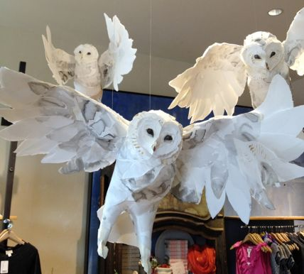 Hedwig and friends flapping amok at Hogwarts