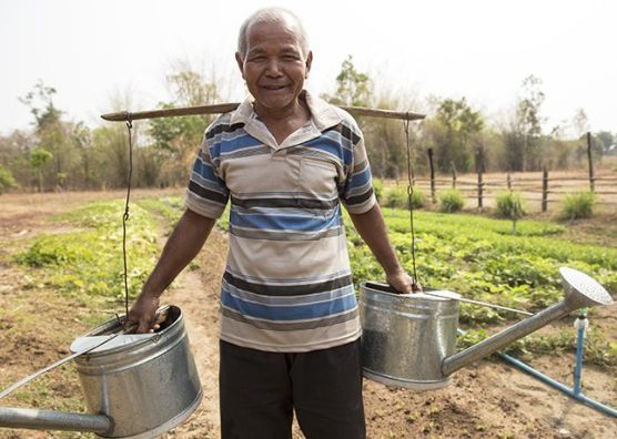 Seventy-year-old Cambodian farmer Seth Sorn received vegetable seeds, piglets, chicken coop materials, and training from Samaritan's Purse so he could be a 'model farmer' for his community.