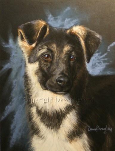 German Shepherd Dog Puppy by dawnsecord on Etsy