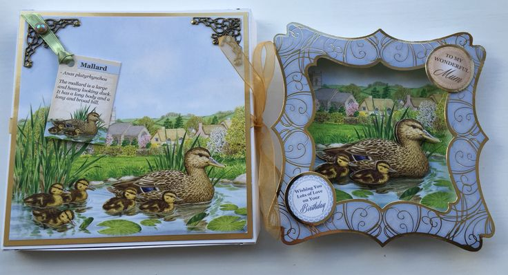 Hunkydory Birds Of Britain Card and Box by Sospecial Cards