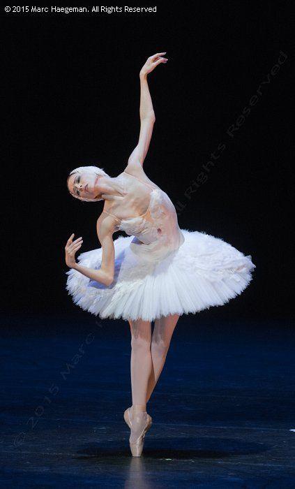 Svetlana Zakharova (Bolshoi Ballet) - © 2015 by Marc Haegeman
