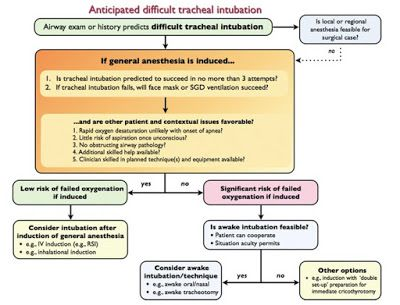 Cardiac Anesthesiologist: Anticipated difficult tracheal intubation: Canadia...